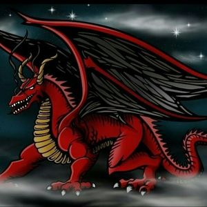 RED DRAGON Airbrushed T-shirt Custom Made to Order
